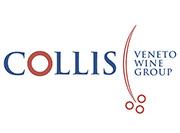 Logo Collis Veneto Wine Group