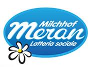 Logo attuale cliente Latterie Merano